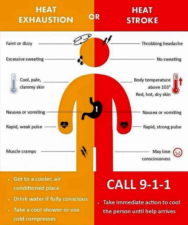 heat exhaustion and heat stroke infographic